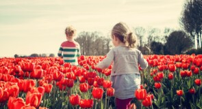 Hvorfor det er vigtigt at have en børneulykkesforsikring