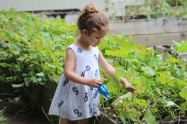 Tag børnene med i havearbejdet