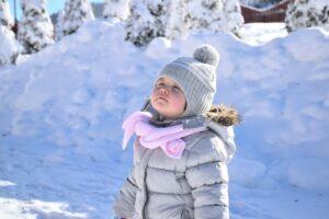 Barn vinter