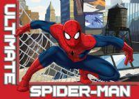 gulvtaeppe-boernevaerelset-spiderman-paa-taget