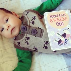 milestone-baby-kort-weeks