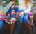 Strik økologisk tøj til din baby