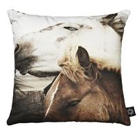 puder-med-print-heste
