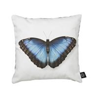 puder-med-print-sommerfugl