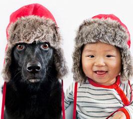unikke-boernebilleder-hund